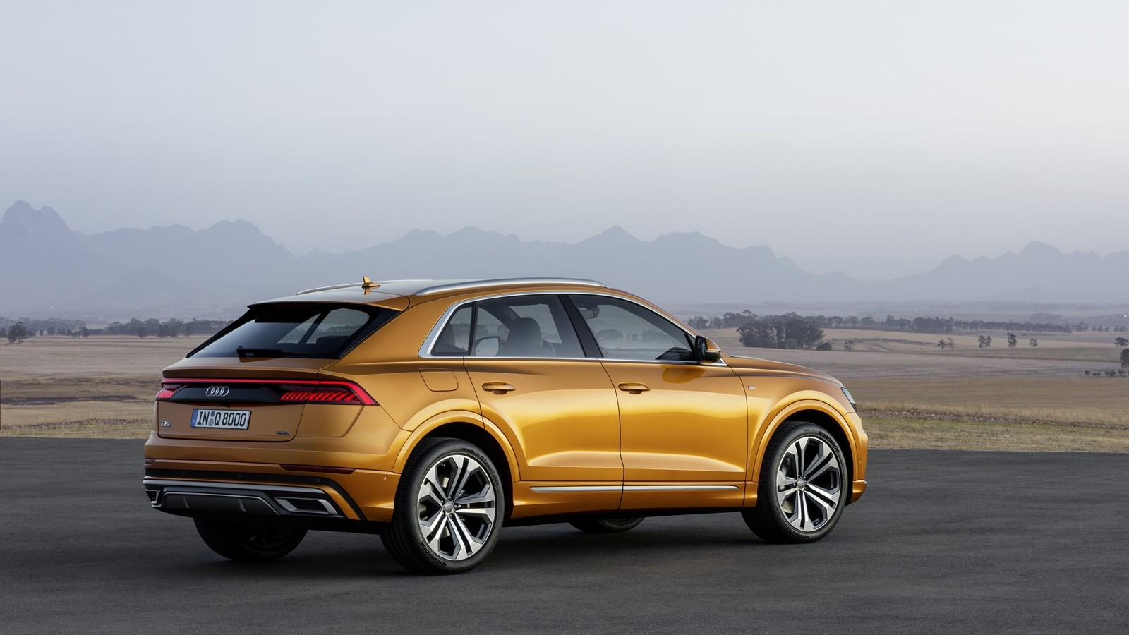 Foto de Audi Q8 2019 (9/33)