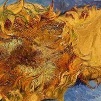 Los girasoles de Van Gogh van a marchitarse, según un estudio de rayos X