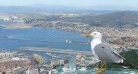 Luxemburgo respalda la fiscalidad de Gibraltar