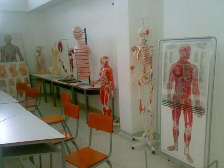 Lo mejor de Vitónica en 2013: el cuerpo humano