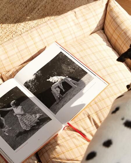 Zara Home Mascotas 9