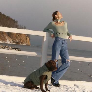 Tu mascota ahora podrá seguir las tendencias del momento: Zara lanza su primera colección especial para perros