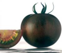 Kumato, tomates dulces e intensos