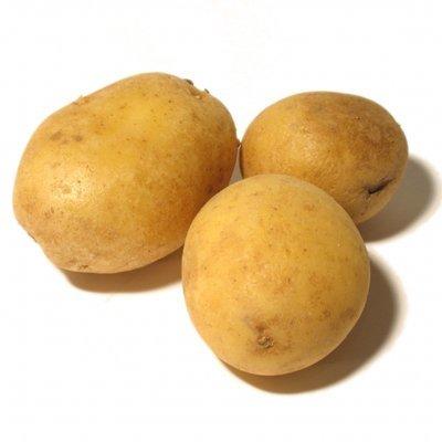 Distintas formas de cocinar Patatas II