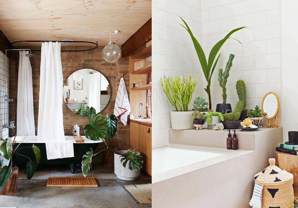 11 ideas para llenar de plantas el ba o y crear tu selva - Plantas en el bano ...