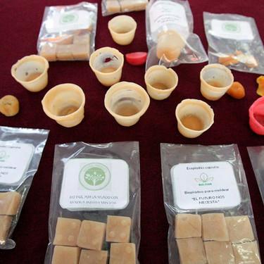 Alumnos del Politécnico crean vasos biodegradables a partir de cáscara de papa