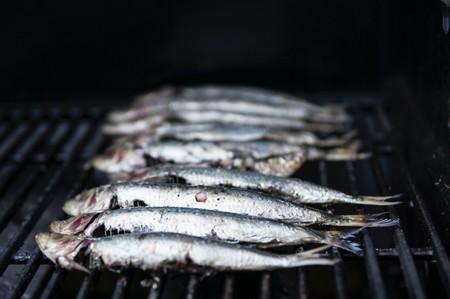 Fish Food Grill 1321124
