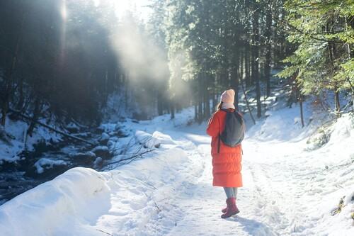 Chollos en tallas sueltas de sudaderas, forros polares y abrigos Geographical Norway rebajados en Amazon
