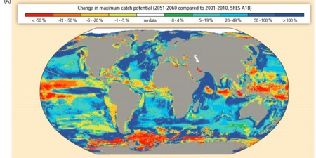 These Two Maps Show How Climate Change Is Destroying The Oceans