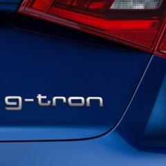 Foto 5 de 19 de la galería audi-a3-sportback-g-tron en Motorpasión