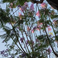 Foto 4 de 38 de la galería realme-x3-superzoom en Xataka