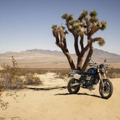 Foto 29 de 58 de la galería triumph-scrambler-1200-2019-2 en Motorpasion Moto