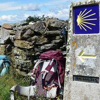 El Camino de Santiago echa a andar a partir del 1 de julio