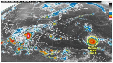 Irma H5