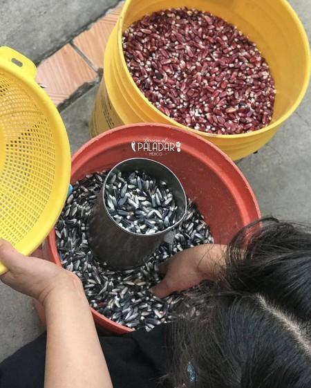Nixtamalizacion-grano-maiz-Eugenia-Revoreda-directo-al-paladar-Mexico