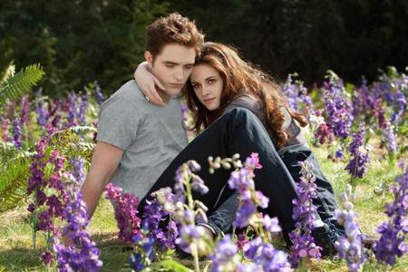 Robert Pattinson en Australia y Kristen Stewart ni en pintura, por favor