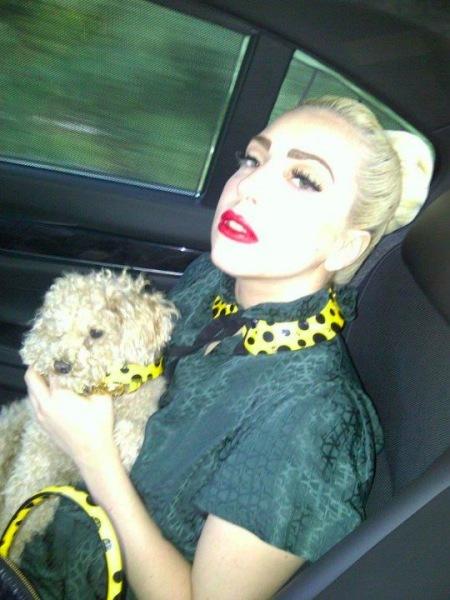 A Lady Gaga le gusta zampar... y desde luego, no está de no comer