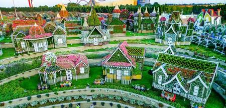 Dubai Miracle Garden 7
