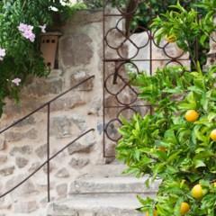Foto 15 de 19 de la galería jardi-d-arta en Trendencias Lifestyle