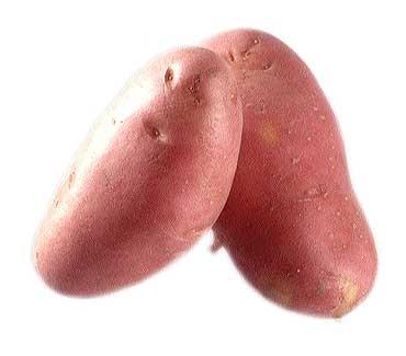 Distintas formas de cocinar Patatas (I)