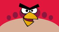 """CEO de Rovio dice que la piratería """"atrae mas fans a Angry Birds"""""""