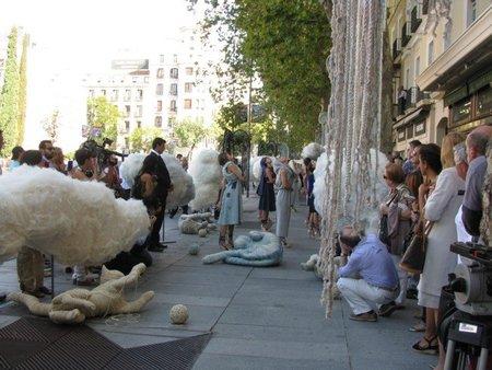 campaña por la lana 1