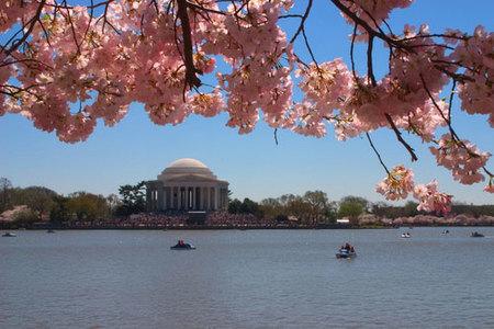 Taxi acuático en Washington DC