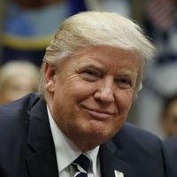 Hemos descubierto el secreto mejor guardado de Donald Trump. Sí, ya sabemos porqué tiene el pelo así