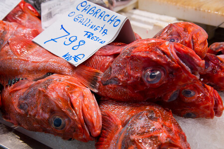 cabracho gallineta rascacio pescado blanco de temporada roca