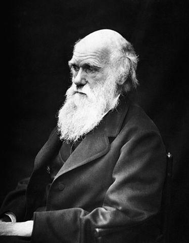 Mapa de la belleza: ¿dónde viven las chicas más guapas… según Darwin?