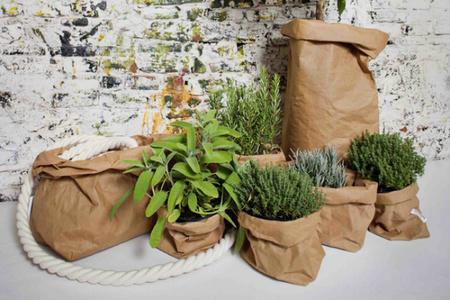 Uashmama, bolsas de papel lavables para tus plantas