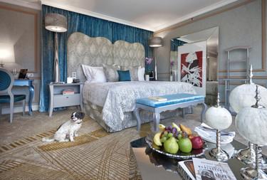 Un hotel en Budapest no sólo admite mascotas, también tiene un programa VIP para los huéspedes de cuatro patas
