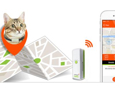 Weenect Cats, el móvil para gatos que te permitirá localizarle y hablar con él