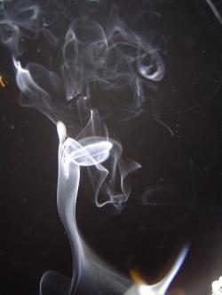 Habitat: con H de humo