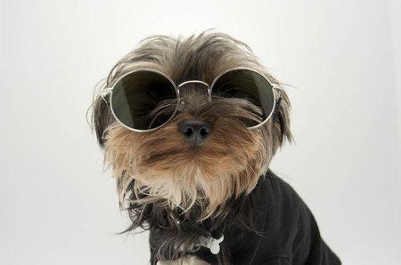 Gafas de sol Bob Sdrunk, el vintage más actual para esta Primavera/Verano 2012