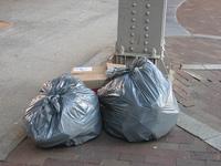"""Ideas sin sentido para ahorrar: """"no es necesario recoger la basura a diario"""""""