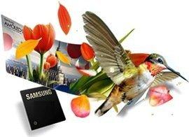samsung-hummingbird1.jpg