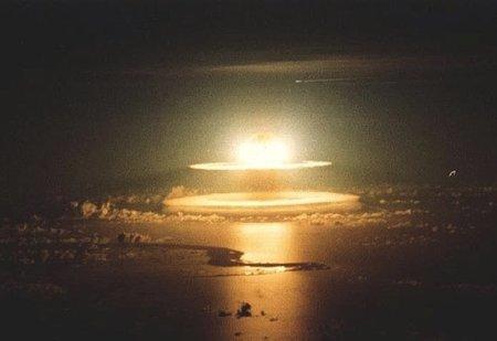 ¿Por qué las cucarachas podrían sobrevivir a un holocausto nuclear?