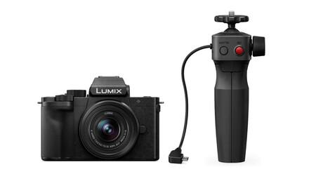 Panasonic Lumix G100 Grip