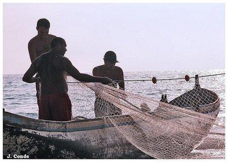 ¿Qué tienen en común trabajadores de los Registros y los pescadores? salarios ligados a beneficios