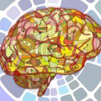 """Lo que la ciencia dice sobre los ejercicios para """"poner en forma nuestro cerebro"""""""