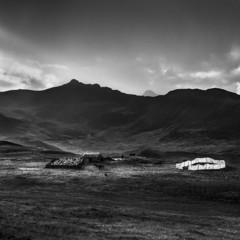 Foto 10 de 14 de la galería back-to-silence-de-sandra-pereznieto en Xataka Foto