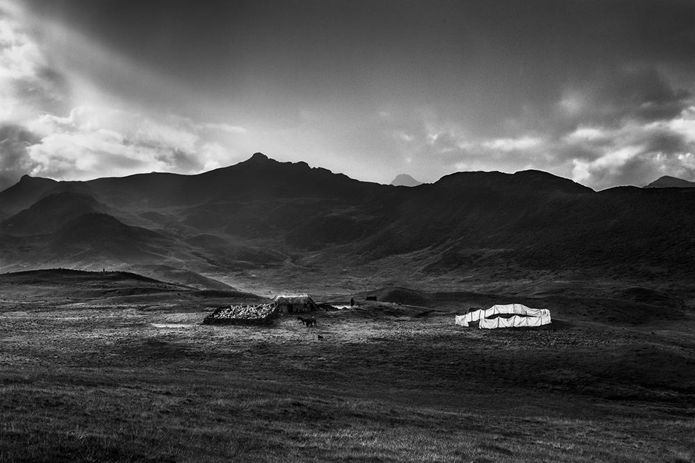 Foto de 'Back to Silence', de Sandra Pereznieto (10/14)