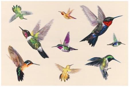 El vuelo del colibrí sobre la alfombra