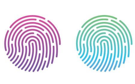Two Fingerprints 660x407