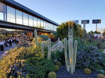 ¿Un jardín de cactus? Sí, y está en Madrid