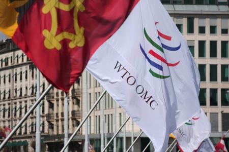 Antigua y Barbuda obtiene la autorización de la OMC para suspender los derechos de autor estadounidenses
