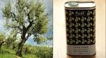 Adoptar un olivo, una curiosa iniciativa
