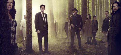 'Wayward Pines', intriga veraniega con más que un pueblo misterioso