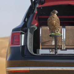 Foto 8 de 36 de la galería bentley-bentayga-falconry en Motorpasión